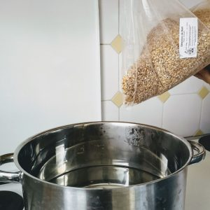 Malt brassage maison homebrewing cuisine